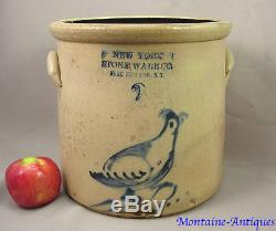 Antique New York decorated Stoneware Bird Crock c. 1875